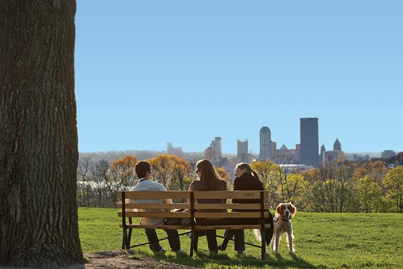 dog-skyline