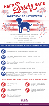 Follow these tips to ensure your pet stays safe on July 4.