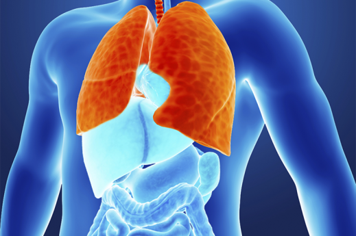 inflamed lungs graphic