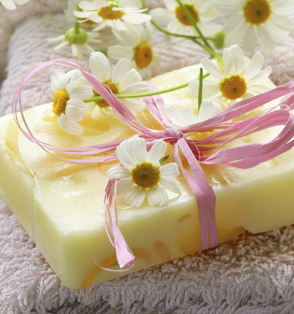 soap bar daisies