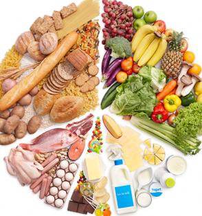balanced meal circle chart
