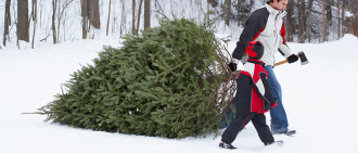 family cutting christmas tree