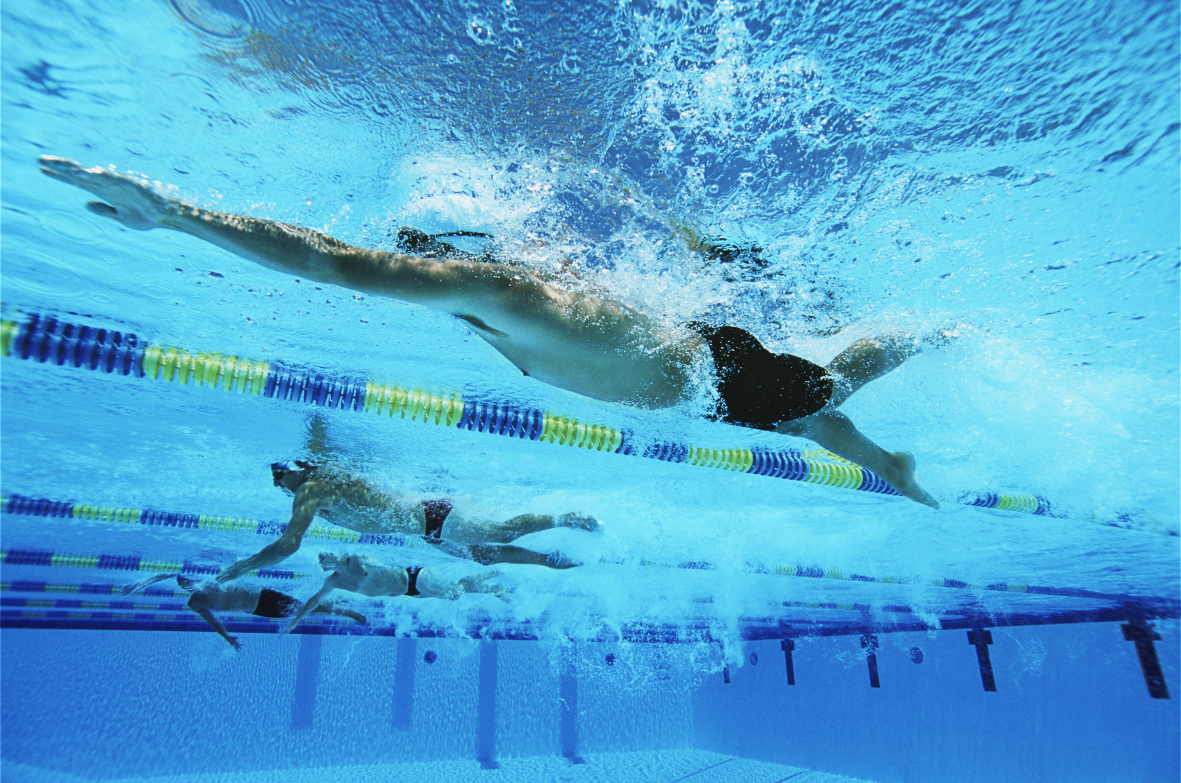 Learn more about the nutrition needs of competitive swimmers