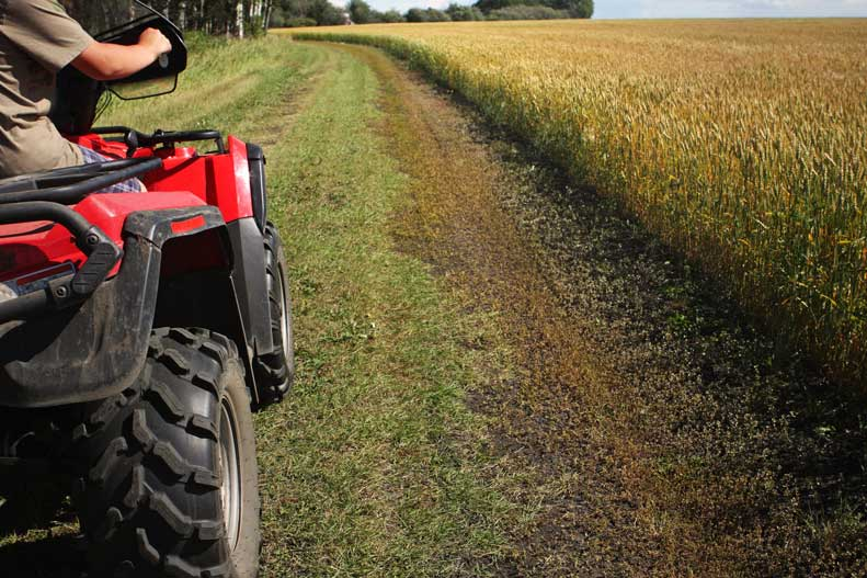 Learn these ATV safety tips to prevent injury while riding