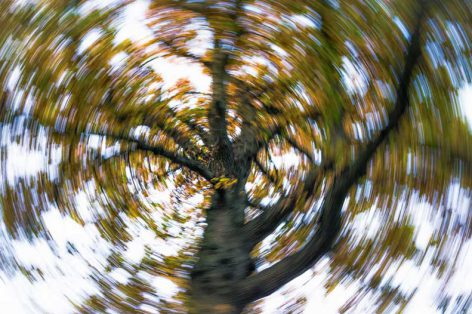 Causes, Symptoms, and Treatment for Vertigo