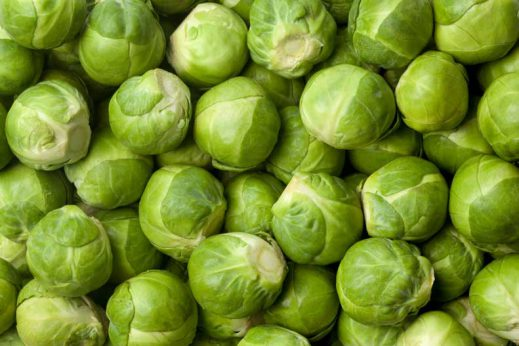 Brussel sprouts are a healthy food