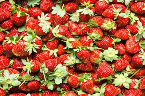 Healthy Snacking for Athletes: Strawberries and Yogurt Dip