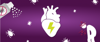 Lyme Carditis: How Does Lyme Disease Affect the Heart?