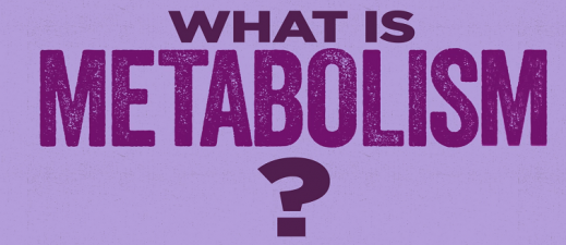 Learn facts about metabolism