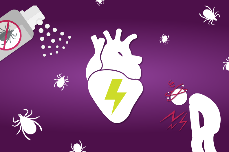 Learn more about Lyme Disease and Heart Health