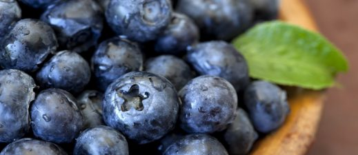 Learn more about antioxidants