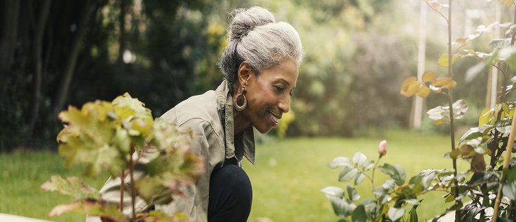 What's the difference between typical aging and dementia