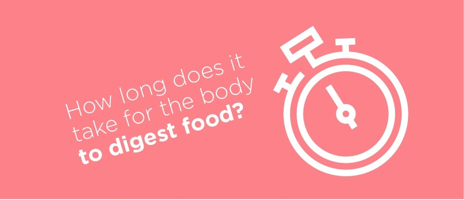 How long does it take for your body to digest food?