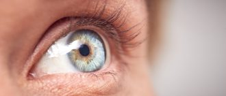Corneal Damage and Disease: What Can Be Done for Vision Loss?